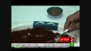 افزایش 30 درصدی صادرات زعفران