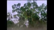 حبیب - آهنگ زیبای کویر باور - از آلبوم کویر باور