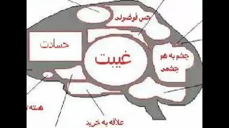 مغز زنان و دختران
