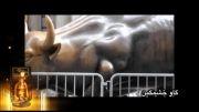 گاو خشمگین برنده جایزه ویژه مرگ بر آمریکا جشنواره فیلم عمار