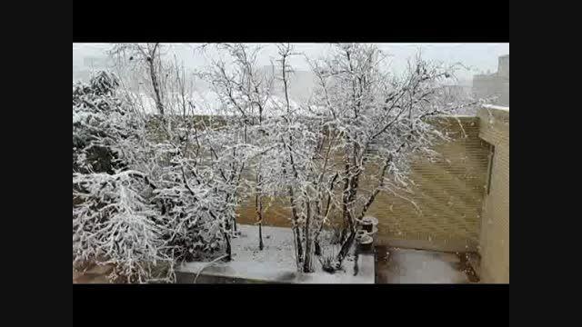 برف- شیراز-29/10.93 هم اکنون