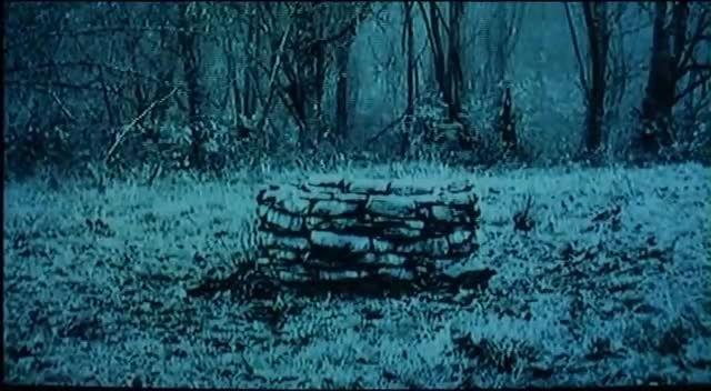 تکه ای از فیلم ترسناک حلقه _ THE Ring