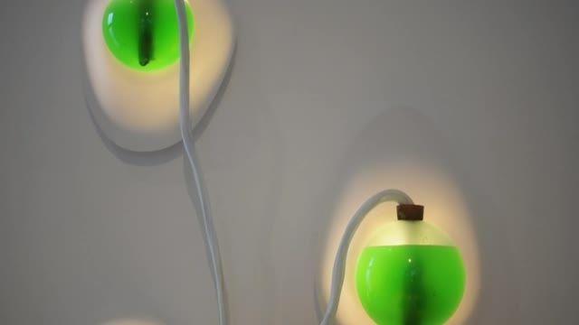 این لامپ ها را می توانید بخورید