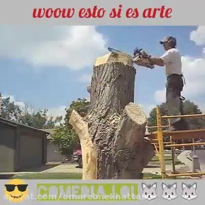 تراش دادن یه درخت بزرگ و ساخته کردن زیباترین مجسمه ها