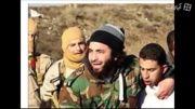 ذوق زدگی داعش بخاطر ساقط شدن هواپیمای اردنی- سوریه