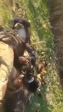 اجساد داعش زیر پای کردها- کرکوک