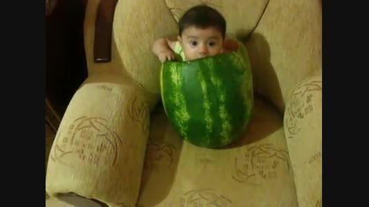 انقدر هندوانه دوست داره رفته تو هندوانه
