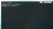 آشنایی با نحوه استفاده از SSH در خط فرمان یا Command Line