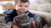 بچه یک ساله گربه دوست
