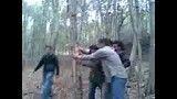 جنگل زدایی
