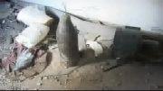 تلاش ناکام تروریستها برای نبش قبر حضرت سکینه (س)