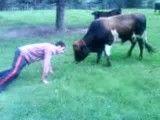 وقتی گاو  جلوی یک ........کم میاره!!!