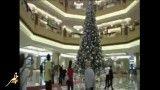 گرانترین درخت کریسمس