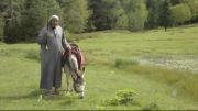 مبلغ وهابی سلیمان الجبیلان و الاغ مطیعش