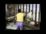 وحشی شدن حیوانات در باغ وحش
