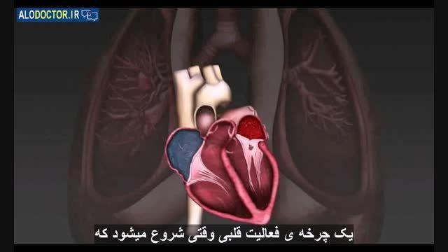 قلب تان را بهتر بشناسید !