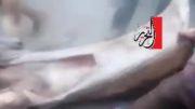 قتل حسن شحاته رهبر شیعیان مصر به دست سلفی ها