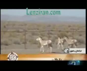 جلوگیری از انقراض نسل به روش ایرانی