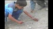 پسربچه مارگیر ایرانی