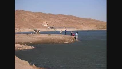 ماهیگیری اشتراکی