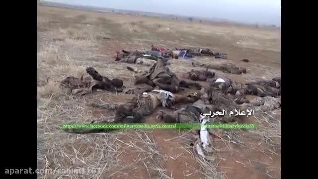 عاقبت سلفی(598)-سوریه-عراق-داعش
