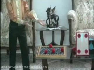 شعبده بازی کوچکترین شعبده باز ایران-دانیال نباتی