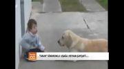 مهر حیوانات به بچه مبتلا به سندرم داون