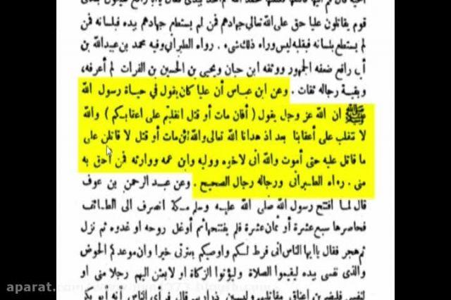 عقیده شیعه نسبت به امیرالمومنین (ع) باید چگونه باشد؟