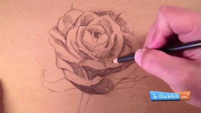 آموزش نقاشی گل رز با مداد رنگی