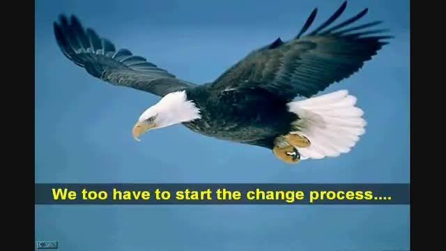 داستان زندگی عقاب