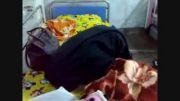 نماز خوندن دختر 10 ساله روی تخت بیمارستان