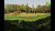 نمایشگاه گل و گیاه کرج   گالری طبیعت