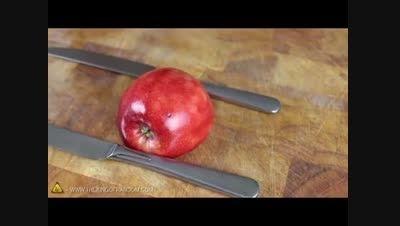 اموزش درست کردن قو با سیب