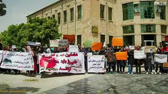 تجمع معترضان سگ کشی در تهران و مشهد