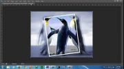 آموزش ساخت تصویر در تصویر با صدا
