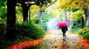 امید: باران می بارد امشب