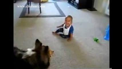 سگ بامزه سعی در خنداندن کودک دارد