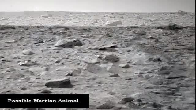 کشف نشانه هی حیات در مریخ توسط ناسا در سال2012