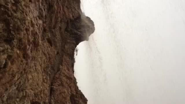 دوست داران نخل بیدار هنگام بارش باران در کوه آبپا