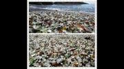 زیبا ترین ، عجیب ترین و خارالاده ترین ساحل های جهان