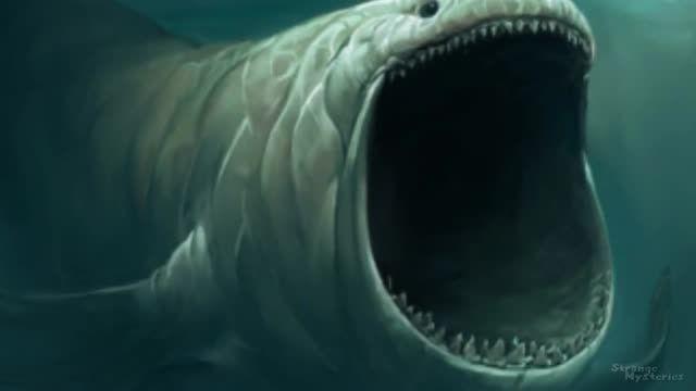 آیا هیولا های افسانه ای دریایی هنوز هم وجود دارند ؟!