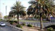 دوبی شهر آسمان خراش ها