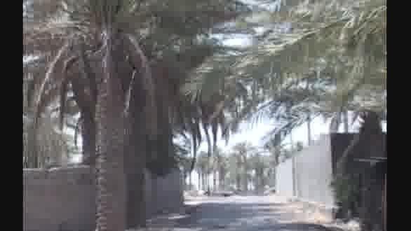 ادامه حملات انتحاری داعش در استان الانبار