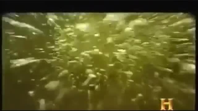 مستند موجودات عجیب و غریب در اعماق دریا و اقیانوس ها