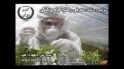 معرفی و آشنایی با رشته گیاه پزشکی