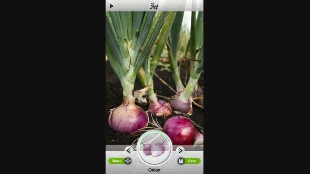 تصاویر گیاهان دارویی در اکسیر سبز