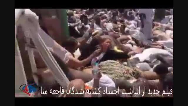 انباشت اجساد کشته شدگان فاجعه منا