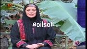 عیدانه گلخانه با حضور بازیگران مجموعه آوای باران پارت 2