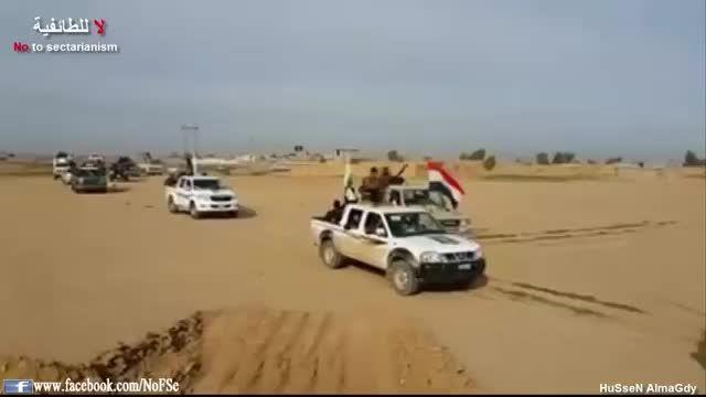 شکستن خط دفاعی تروریست های داعش در فلوجه