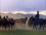 اسب های مغول